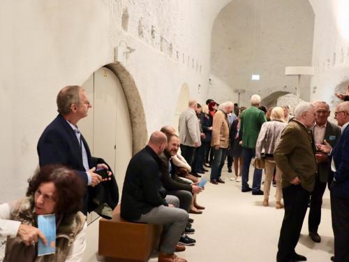 C41 Wiener Neustadt Landesausstellung - 1